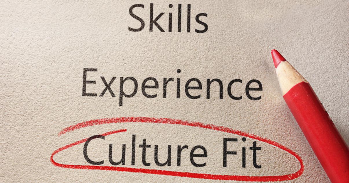 Working team members sharing companys culture